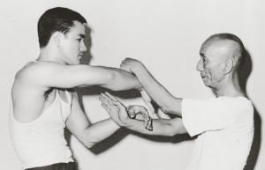 Ip Man vs Bruce Lee